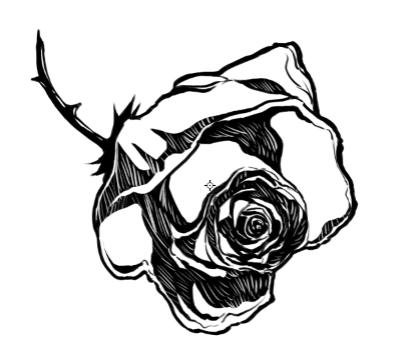 Millay - Rose